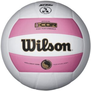 Wilson I-COR High-Performance Indoor Volleyball